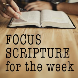 Focus scripture for the week