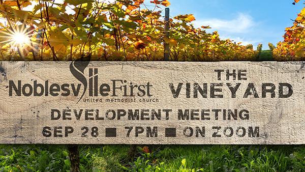 The Vineyard | SEP 2020 meeting web-b