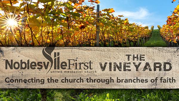 The Vineyard | SEP 2020 vision text