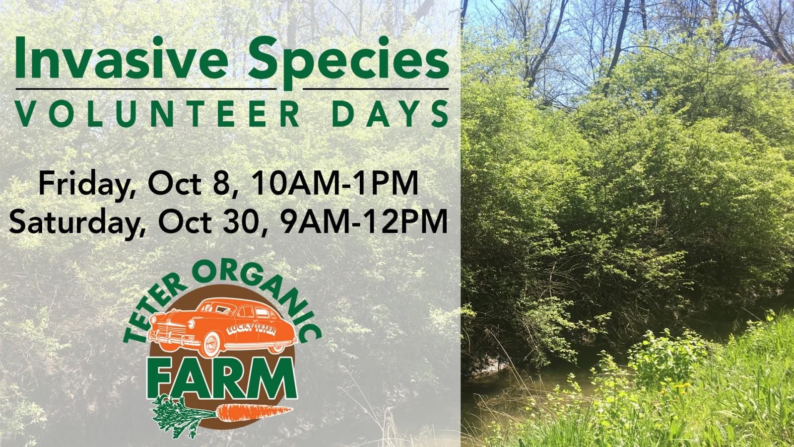 Invasive Species Volunteer Days   OCT 2021 slide
