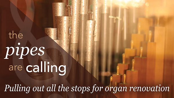 Organ Renovation web-b