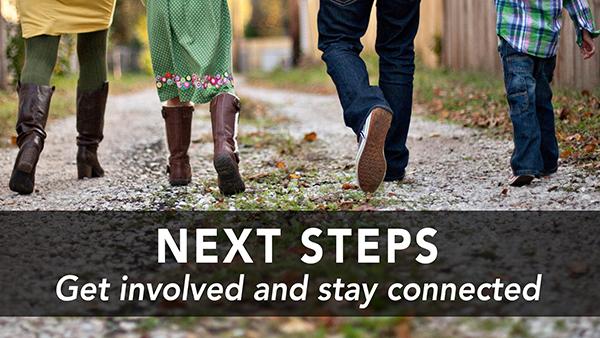 Next steps web